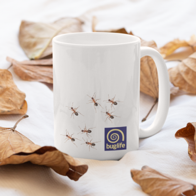 a-white coffee-mug-surrounded-by-fall-leaves- and captioned BugLife